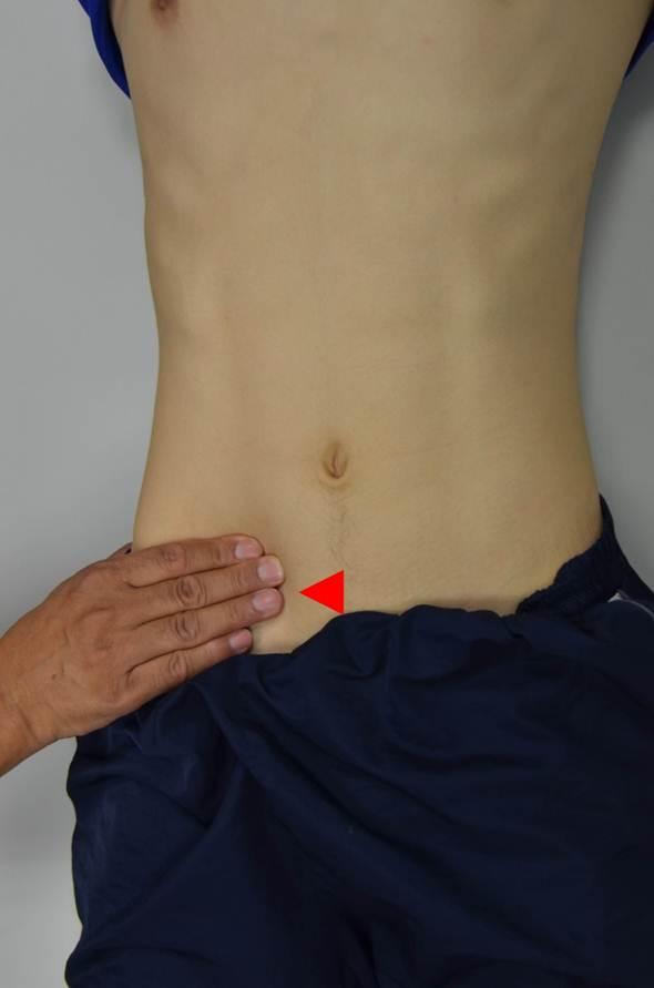 Liver Method Of Examination Clinipedia